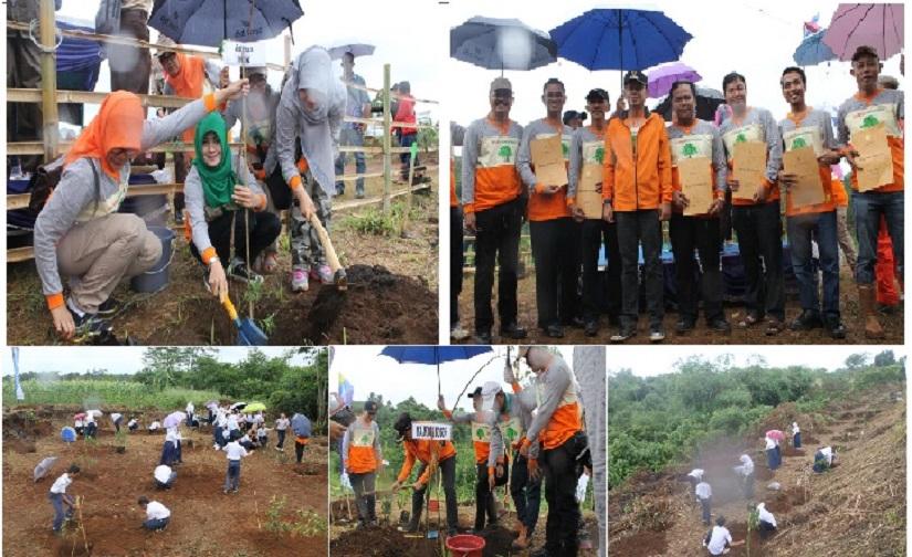 Aksi Menanam 700 Pohon pada Hari Menanam Pohon