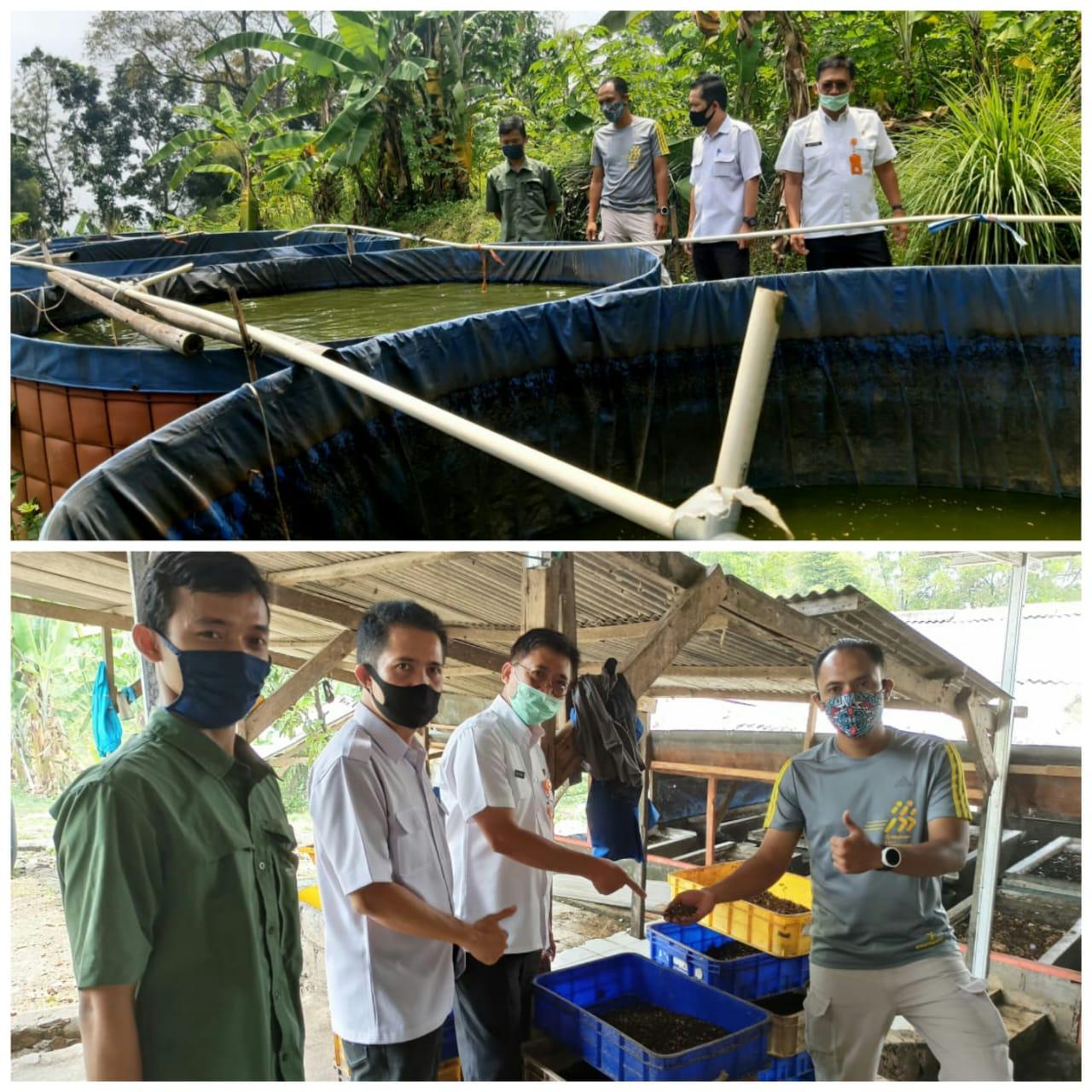 Kunjungan DLH Kota Bogor ke Maggot Indonesia Lestari di Sentul Kabupaten Bogor